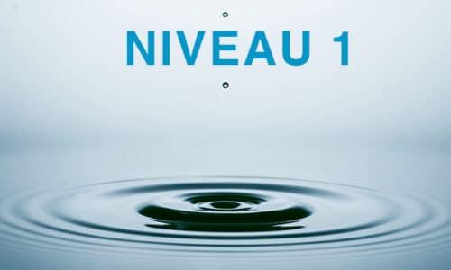 image-niveau1
