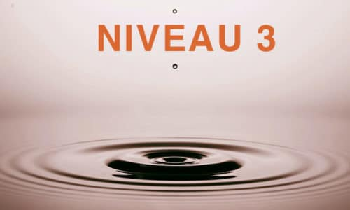 image-niveau3
